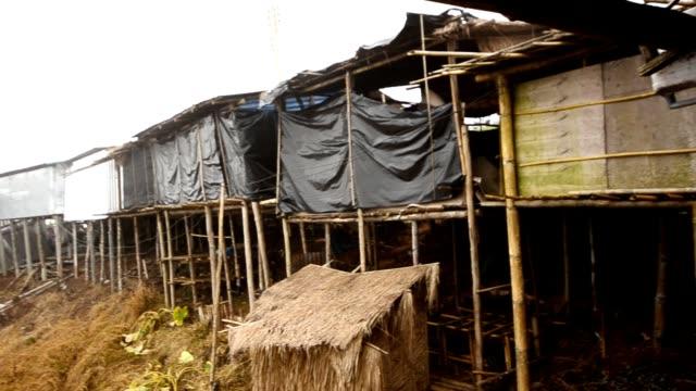 霧に包まれたスラム街 - 掘建て小屋点の映像素材/bロール