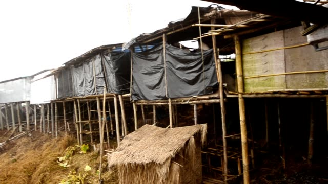 slum in fog - shack stock videos and b-roll footage