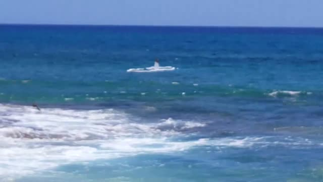 vídeos de stock, filmes e b-roll de a small aircraft went into the water off makaha beach o'ahu plane is about 100 yards off the beach with a barrier surrounding it for safety measures... - oceano pacífico do sul