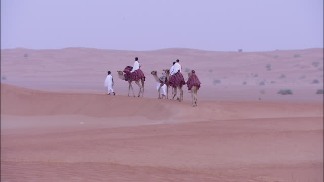 a small band of camels and riders cross a desert in saudi arabia. - saudi arabien stock-videos und b-roll-filmmaterial