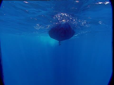 Small boat approaches camera at ocean surface, Tonga