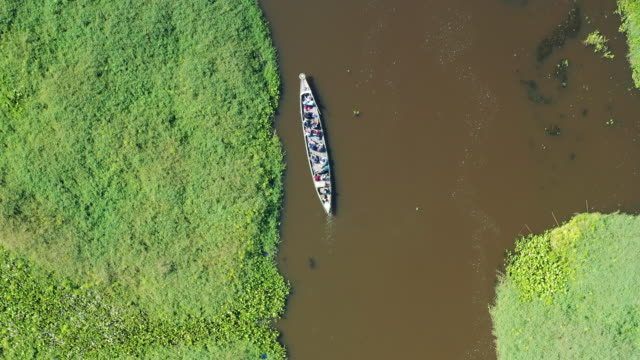 vídeos de stock e filmes b-roll de small boat crossing a river in borneo (aerial view) - barco de turismo