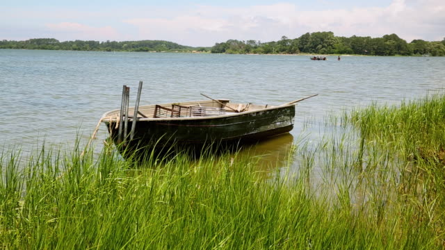 ws ds small boat floating near shore of inlet / oyster, virginia, usa - marsh stock videos & royalty-free footage