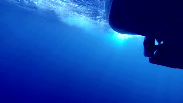 small boat in navigation from the bottom of the sea - propeller stock videos and b-roll footage