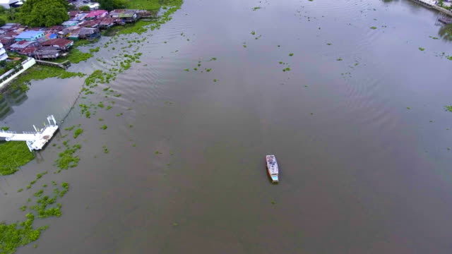 small boat in river covered by water hyacinth - hyacinth stock videos & royalty-free footage