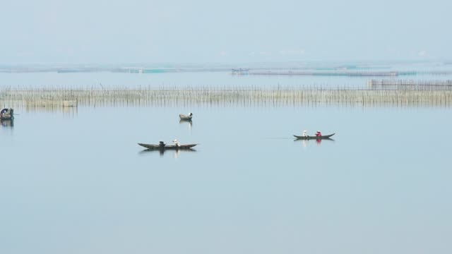 small boats of fishermen move fishing in lagoon one of the largest lagoons in central vietnam - backwater stock videos & royalty-free footage