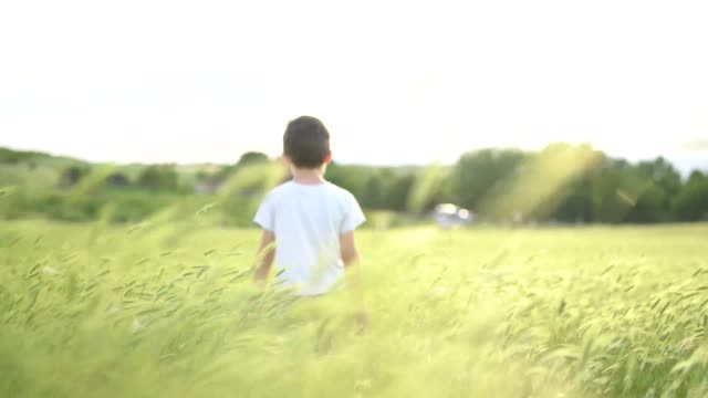 small boy walking in grass field waving his hands - boys stock videos & royalty-free footage