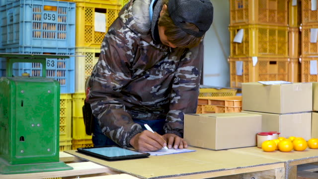 a small business farm owner packing oranges in preparation for shipping direct to the customer - nishiseto expressway stock videos & royalty-free footage