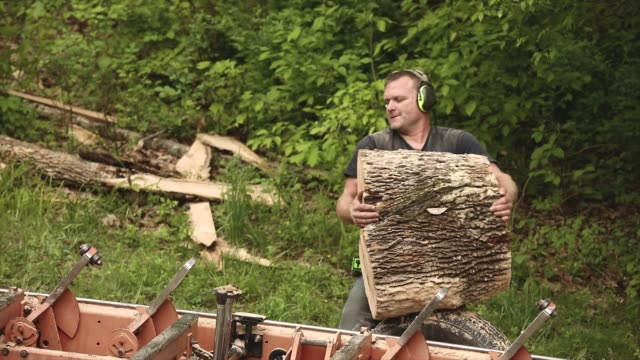 small business wood worker lumber mill carries heavy stump - timber yard stock videos & royalty-free footage