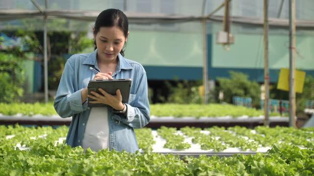 vidéos et rushes de jeune fermier intelligent de petite entreprise - solution
