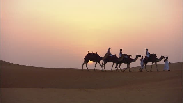 a small camel caravan crosses a desert in saudi arabia. - saudi arabia stock videos and b-roll footage