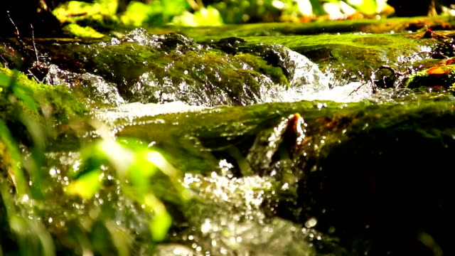 slo mo kleine cascades - spring flowing water stock-videos und b-roll-filmmaterial