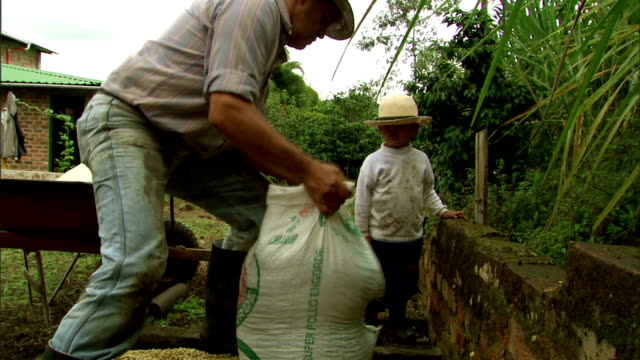 a small child watches a worker hoist a full bag of coffee beans into a wheelbarrow. - wheelbarrow stock videos and b-roll footage