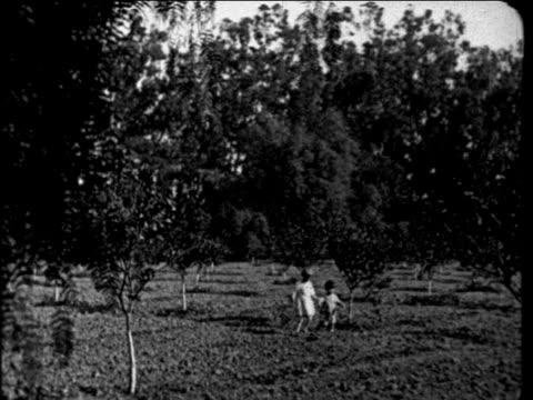 B/W 1927 2 small children walking thru lemon orchard outdoors / educational