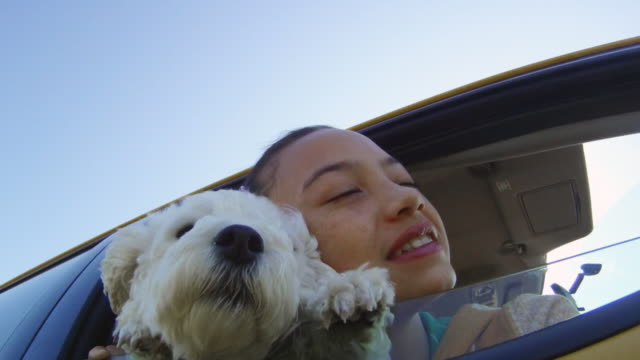 Small dog and girl leaning out car window