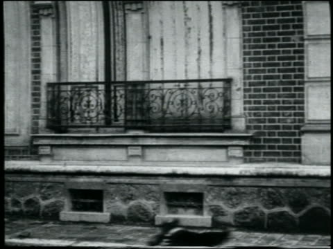 b/w 1907 small dog hopping from sidewalk onto building / france / feature - slapstick stock videos & royalty-free footage