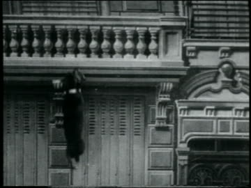 b/w 1907 small dog running up side of buidling / france / feature - slapstick comedy stock videos & royalty-free footage