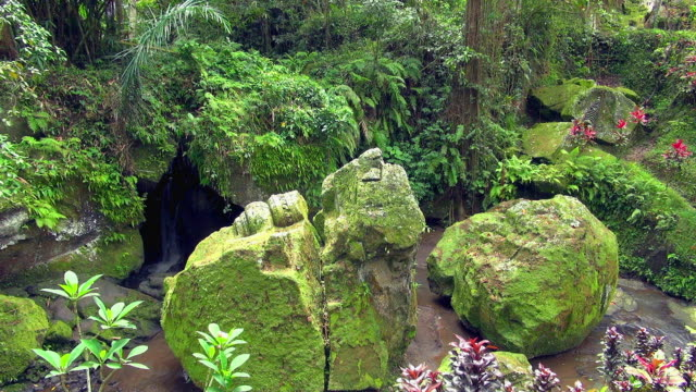 small falls hidden by moss covered rocks in bali - small stock videos & royalty-free footage