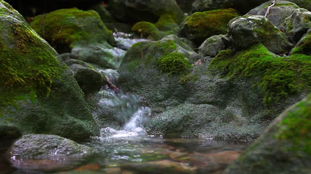 small forest clear creek with transparent water flowing through stones with green moss - boulder rock stock videos & royalty-free footage