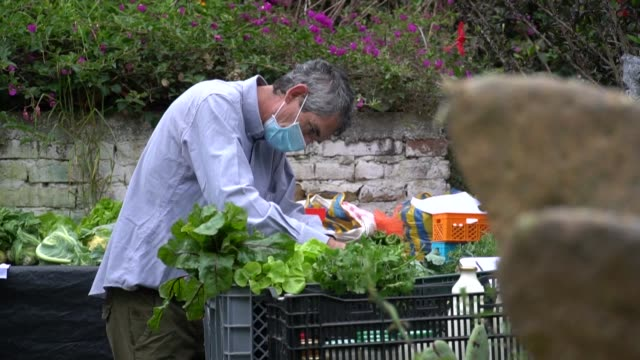 vídeos y material grabado en eventos de stock de small fruit and vegetable producers in quito deliver organic produce to their clients' homes as the country is under curfew in an effort to stop the... - ecuador