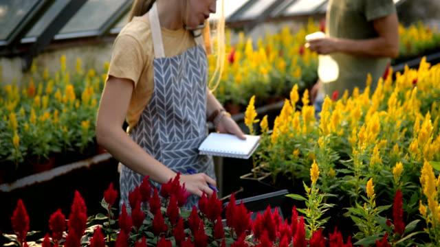 small garden business - gardening stock videos & royalty-free footage