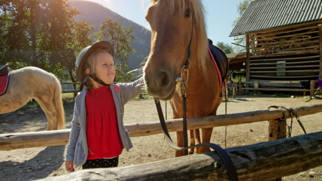 small girl petting a horse in the outside pen on a sunny day - stroking stock videos & royalty-free footage
