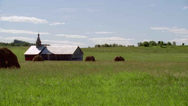 ms small gray barn in field with haystacks - hay isolated stock videos & royalty-free footage