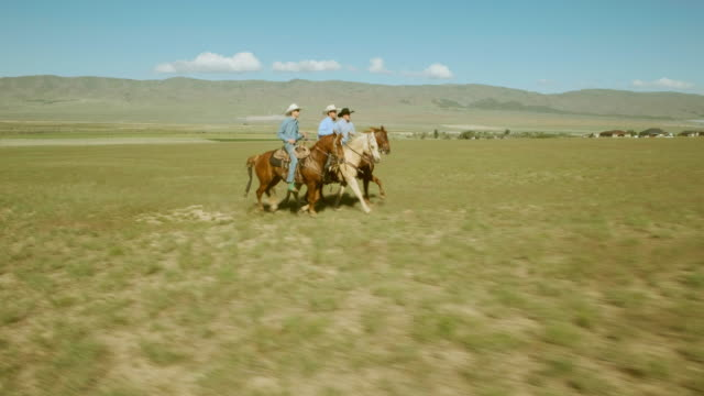 stockvideo's en b-roll-footage met kleine groep cowboys op paarden - prairie