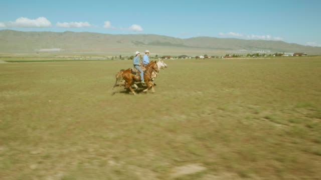 small group of cowboys on horses - prairie stock videos & royalty-free footage