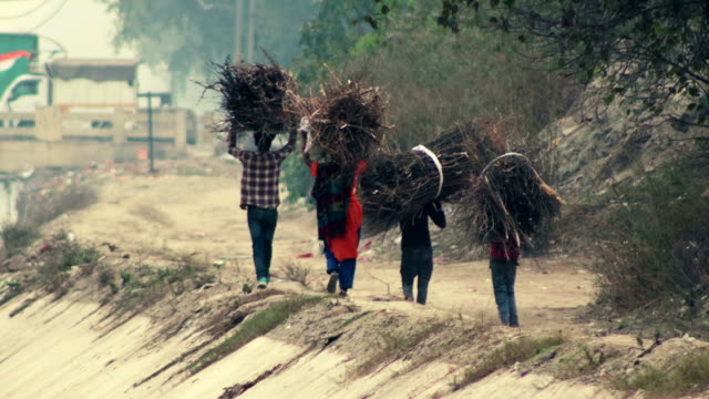 small group of family members carrying firewood on head - indian ethnicity stock videos & royalty-free footage
