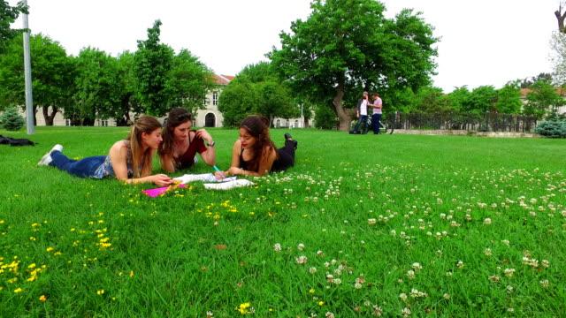 vídeos y material grabado en eventos de stock de pequeño grupo de estudiantes estudiando en el campus - acostado