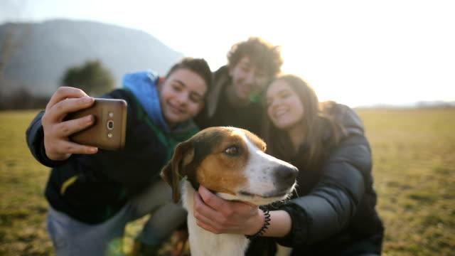 vídeos y material grabado en eventos de stock de pequeño grupo de adolescentes hacen selfie con perro callejero en el campo. hermanos y hermanas en la luz trasera - animal family