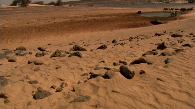 a small lake appears in the sahara desert. - モーリタニア点の映像素材/bロール