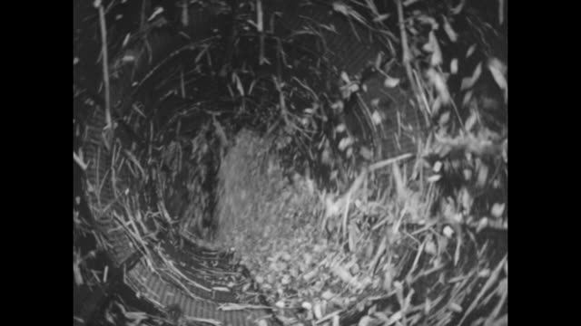 small logs floating along in water chute / workmen use grappling hooks to position logs on conveyor belt / view of inside of large revolving drum as... - liquid solution stock videos and b-roll footage