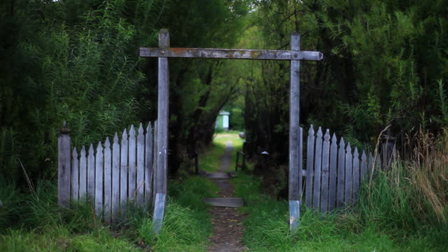 ms small path in green forest (garden) / torres del paine, chilean patagonia, chile - garden path stock videos and b-roll footage