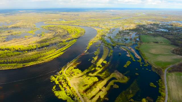 vídeos de stock, filmes e b-roll de pequenos pedaços de terra pf e árvores crescendo no rio pripyat. belarus. - bielorrússia