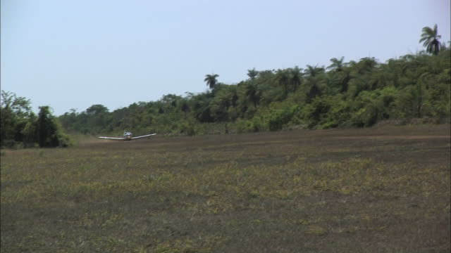 a small plane lands in a clearing in the amazon jungle. - landen stock-videos und b-roll-filmmaterial