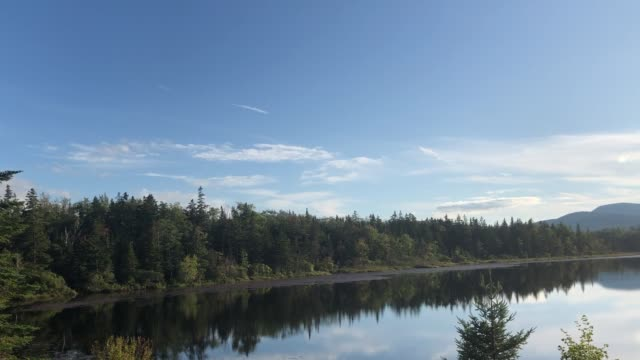 stockvideo's en b-roll-footage met small pond along wilderness area in the rangeley lakes, maine usa region - wildernis