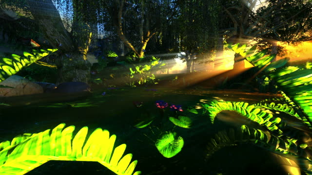 small pond in mystical forest - fantasy stock videos & royalty-free footage