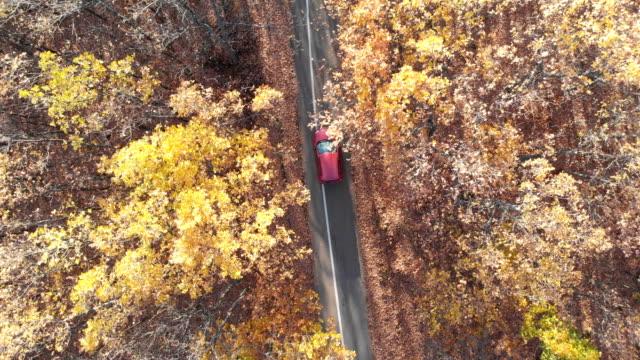 晴れた日に秋の赤い森を走る小さな赤い車。 - 前にいる点の映像素材/bロール