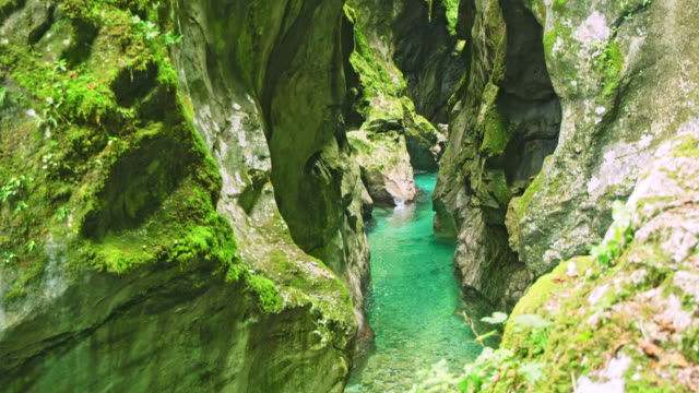 stockvideo's en b-roll-footage met ls small river canyon in slovenië - zoetwater