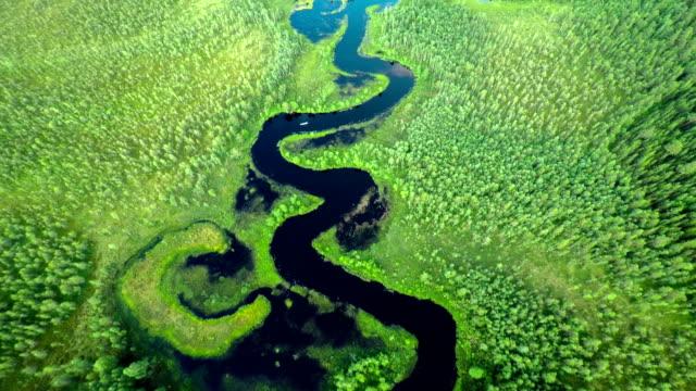 LUFTAUFNAHME : Kleiner Fluss im Wald.