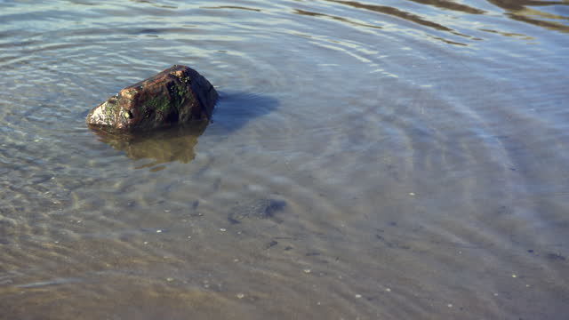 small rock in a pool of water on a scottish beach - general view stock videos & royalty-free footage