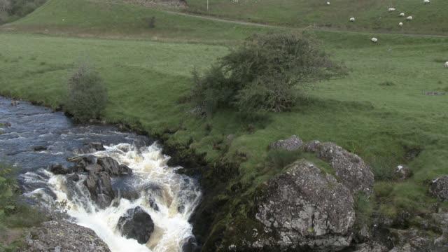 vídeos y material grabado en eventos de stock de pequeño río escoc - johnfscott