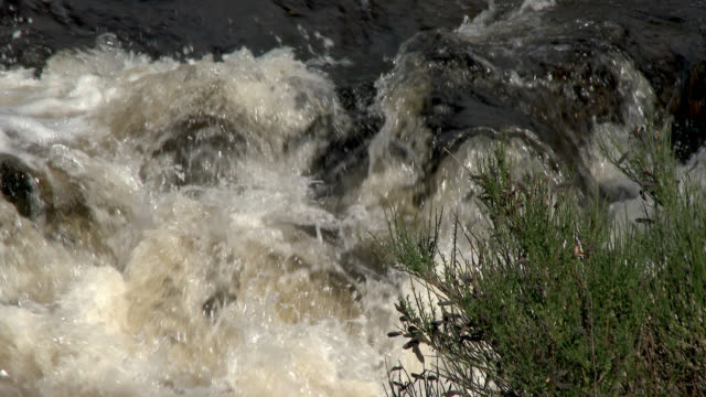 small scottish river - water's edge stock videos & royalty-free footage