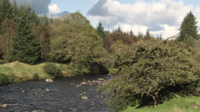 small scottish river - galloway scotland stock videos & royalty-free footage