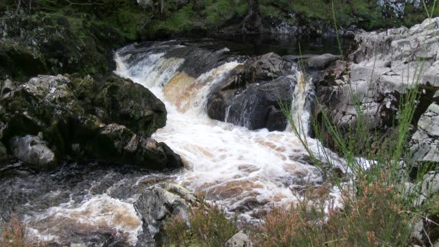 vídeos de stock, filmes e b-roll de pequena cascata no rural escocesa wigtownshire, dumfries e galloway - johnfscott