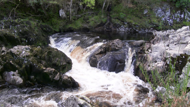small scottish waterfall in rural wigtownshire, dumfries and galloway - johnfscott stock videos & royalty-free footage