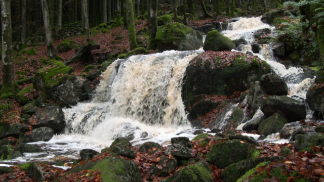 small scottish waterfall swollen by heavy rain in late autumn - galloway scotland stock videos & royalty-free footage