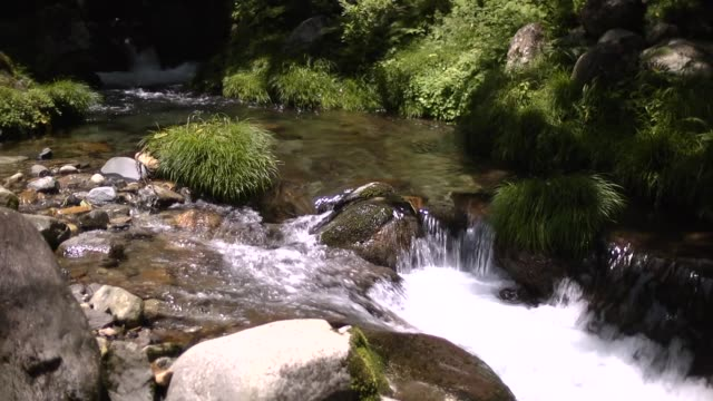 small shallows in river, gifu, japan - purity stock videos & royalty-free footage